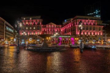 Frankfurter Hof Pink 2