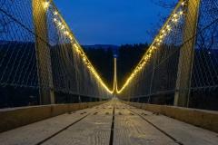 geierlights2