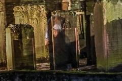 alter jüdischer Friedhof 5