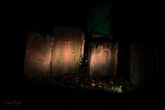 alter jüdischer Friedhof 3