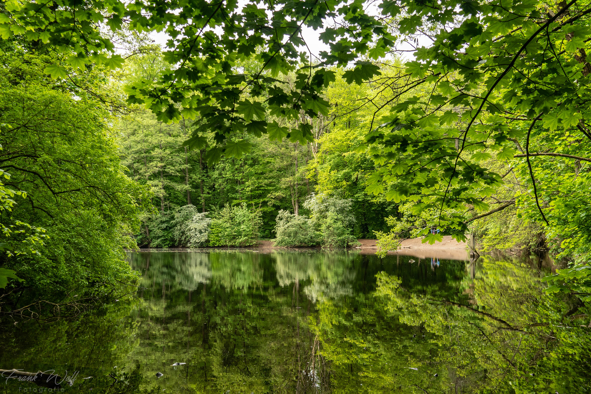"""Der Jacobiweiher. Im Volksmund wird der Weiher auch liebevoll """"Vierwaldstätter-See"""" genannt, wegen der Ähnlichkeit, der Form und der vier umliegenden """"Städte"""" Niederrad, Oberrad, Sachsenhausen, Neu-Isenburg."""